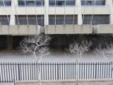 Johannesburg disused Carlton hotel