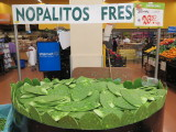 Mexico City cactus leaf for sale in Walmart