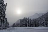 kananaskis scenery 112914IMG_2391