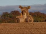A farmer with a sense of humour ! Near Croftamie.