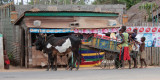 Zebu cart, room for all the family