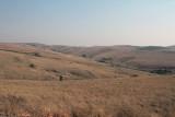 Grasslands between Isalo and Fianarantsoa