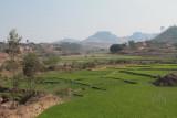 Roadside view near Fianarantsoa