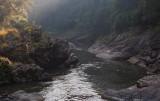 River in Ranomafana NP