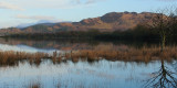 Sunrise at Ring Point with Conic Hill behind, Loch Lomond