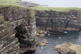 Cliffs and sea bird colony on Handa Island
