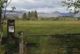 Low Mains, Loch Lomond NNR