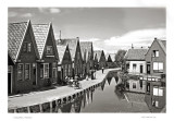 Volendam,  Holland July 1951