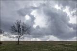 Imminent  Thunderstorm