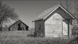 Barn and Backstop