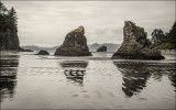 Sea Stacks, Ruby Beach