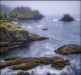 Bleak Day,  Cape Flattery