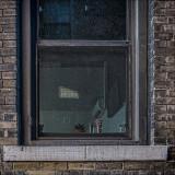 Alleyway  Window