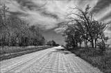 Washboard Road