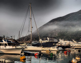 foggy evening in the Typhoon Shelter