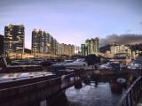 Typhoon Shelter lights up as evening falls