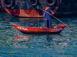 Typhoon Shelter Boatman