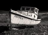 EDITH-E