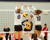 Queen's vs Western W-Volleyball 11-12-16