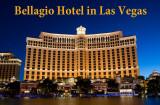 2015 - Las Vegas - Show O at Bellagio Hotel