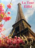 2013 - FRANCE - Paris  - Album 1 - La Tour Eiffel & Les Bateaux Mouches