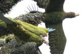 37 -  Canada – Montréal – L'arbre aux oiseaux - 18