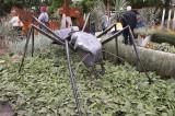 40 – Canada – Montréal (Albert Mondor) – Le jardin de verre et de métal - 2