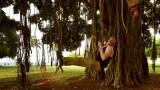 Far less aesthetic Banyan tree gymnastics