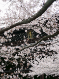 Eastern Kyoto