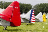 T-6 Tails