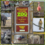The Rosamond Gifford Zoo In Syracuse, New York