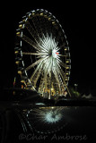 Ferris Wheel Reflection