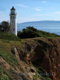Point Vicente Lighthouse 3854