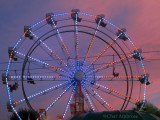 Ferris Wheel 4805