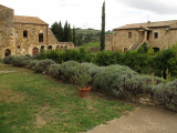 Grounds behind Sant' Antimo