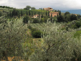 View of the Countryside from Sant' Antimo