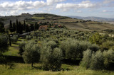 Val d Orcia Countryside