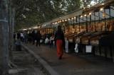 Evening Stroll Along the Tiber