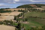 Cypress Lined Road near Monticchiello