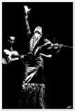 Maria Bermudez' Sonidos Gitanos Flamenco