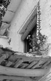 La Alpujarra  1983