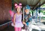 Fairy and knight