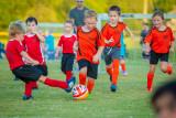 Soccer-104