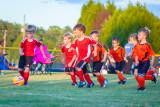 Soccer-128