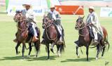 2014_03_22 Peruvian Paso Horses at La Joya