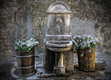 1855 Fountain and flower tubs