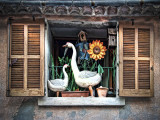 Sunflower and geese window