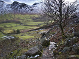 View over Langdale
