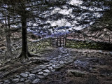 Path to kissing gate, Langdale