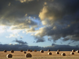 Straw Bales near Rye